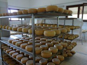 formaggi-marino2
